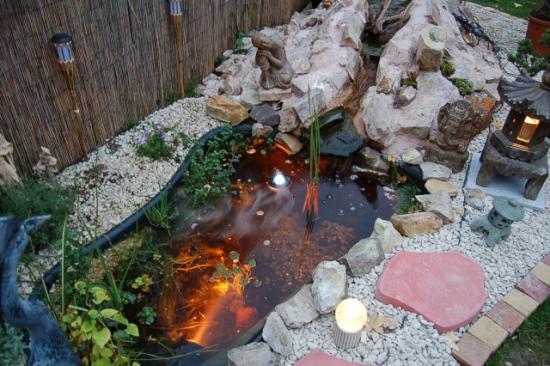bassin-nuit-1.jpg